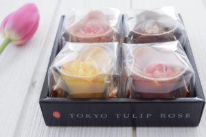 TOKYO TULIP ROSE